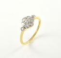 18ct Gold and Platinum Antique Diamond Daisy Cluster Ring